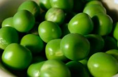Заготовка зеленого горошка на зиму