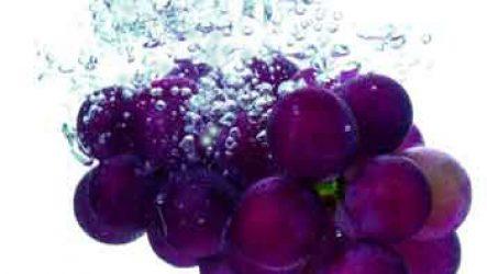 Оригинальная закуска— моченый виноград