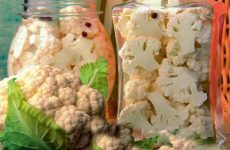 Консервирование цветной капусты