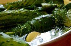 Как засолить огурцы с водкой