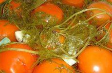 Заготовка соленых помидор с чесноком на зиму