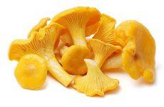 Рецепт грибного соуса из лисичек