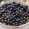 Рецепт домашнего варенья из черемухи