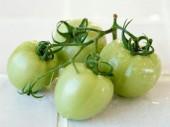 зеленые помидоры быстрого приготовления рецепт