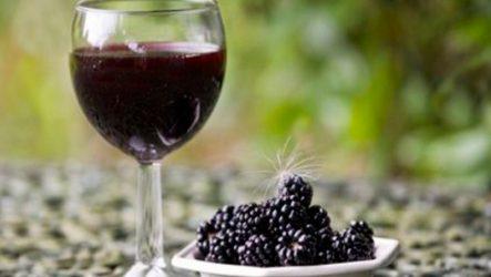 Вино из шелковицы в домашних условиях