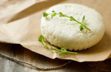 Как приготовить козий сыр в домашних условиях?