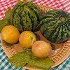 Как приготовить моченые арбузы: несколько оригинальных рецептов