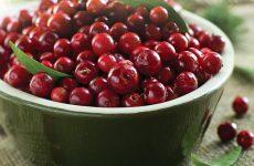 Брусника, протертая с сахаром: вкусный рецепт на зиму