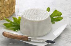Чем заменить рикотту, или домашние рецепты итальянского сыра