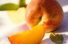 Как заготовить персики в собственном соку на зиму