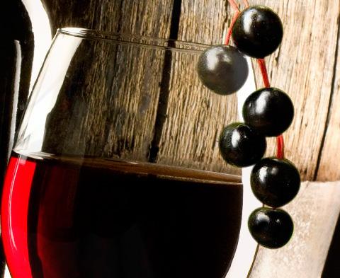 Вино из черемухи