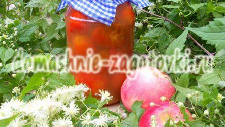 Помидоры в яблочном соке, заготовка на зиму