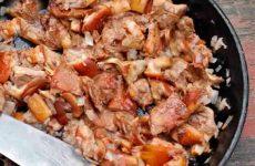 Как готовить грибы свинушки