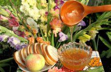 Медовый Спас в 2016 году, традиции и обряды