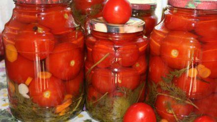 Особенности заготовки помидоров с морковной ботвой