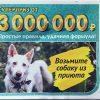 Проверить билет лотереи 6 из 36 тираж 196 от 2 июня