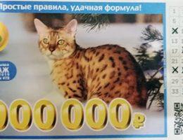 лотерея 6 из 36 тираж 177