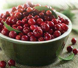 Миниатюра к статье Брусника, протертая с сахаром: вкусный рецепт на зиму