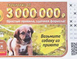лотереи 6 из 36 тираж 197