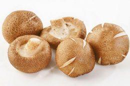 как приготовить грибы шиитаке