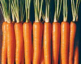Миниатюра к статье Заготовка маринованной хрустящей моркови