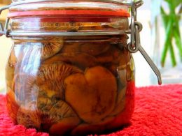 горячая засолка рыжиков