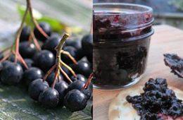 рецепт варенья из черноплодной рябины