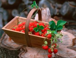 варенье из лесной земляники рецепт