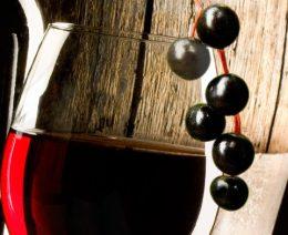 Миниатюра к статье Вино из черемухи: гармоничный тандем вкусовых особенностей и витаминного состава