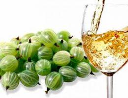 вино из крыжовника
